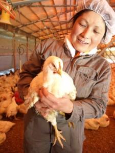 全植若鶏と、柏村さん
