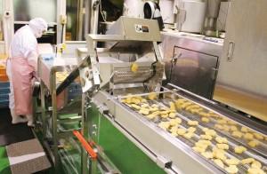 秋川牧園冷凍食品工場(チキンナゲット)