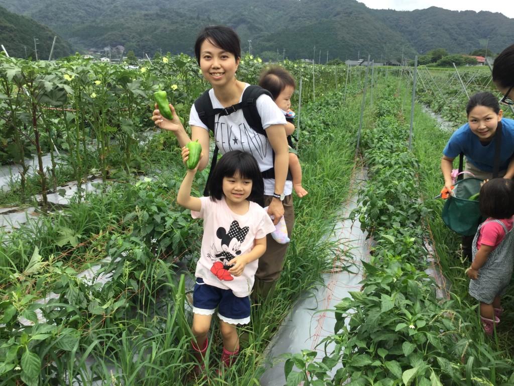 秋川牧園体験ツアーゆめファーム