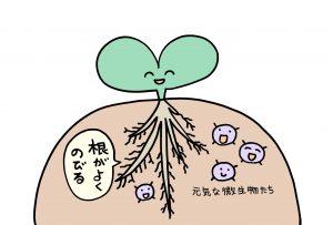 秋川牧園、土の微生物、有機栽培、無農薬野菜