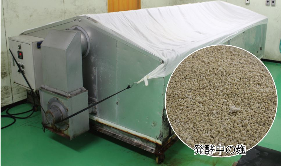 33~35℃、湿度60%のこの機械の中で麹を発酵します
