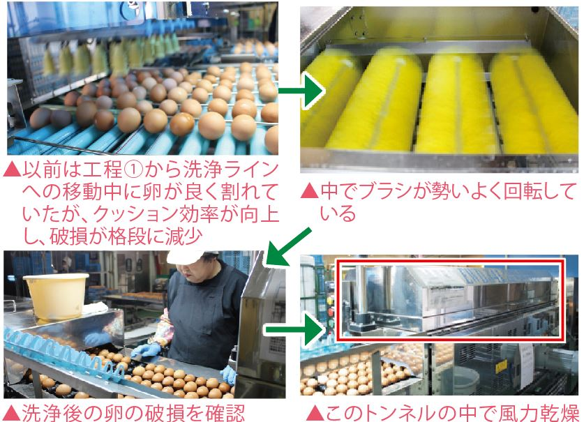 洗卵・乾燥