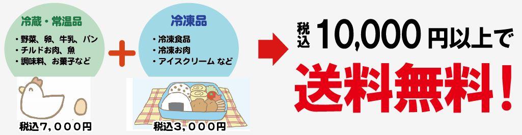 10000円送料無料
