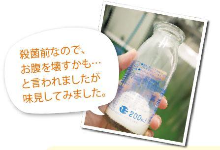 殺菌前のローファット牛乳を味見