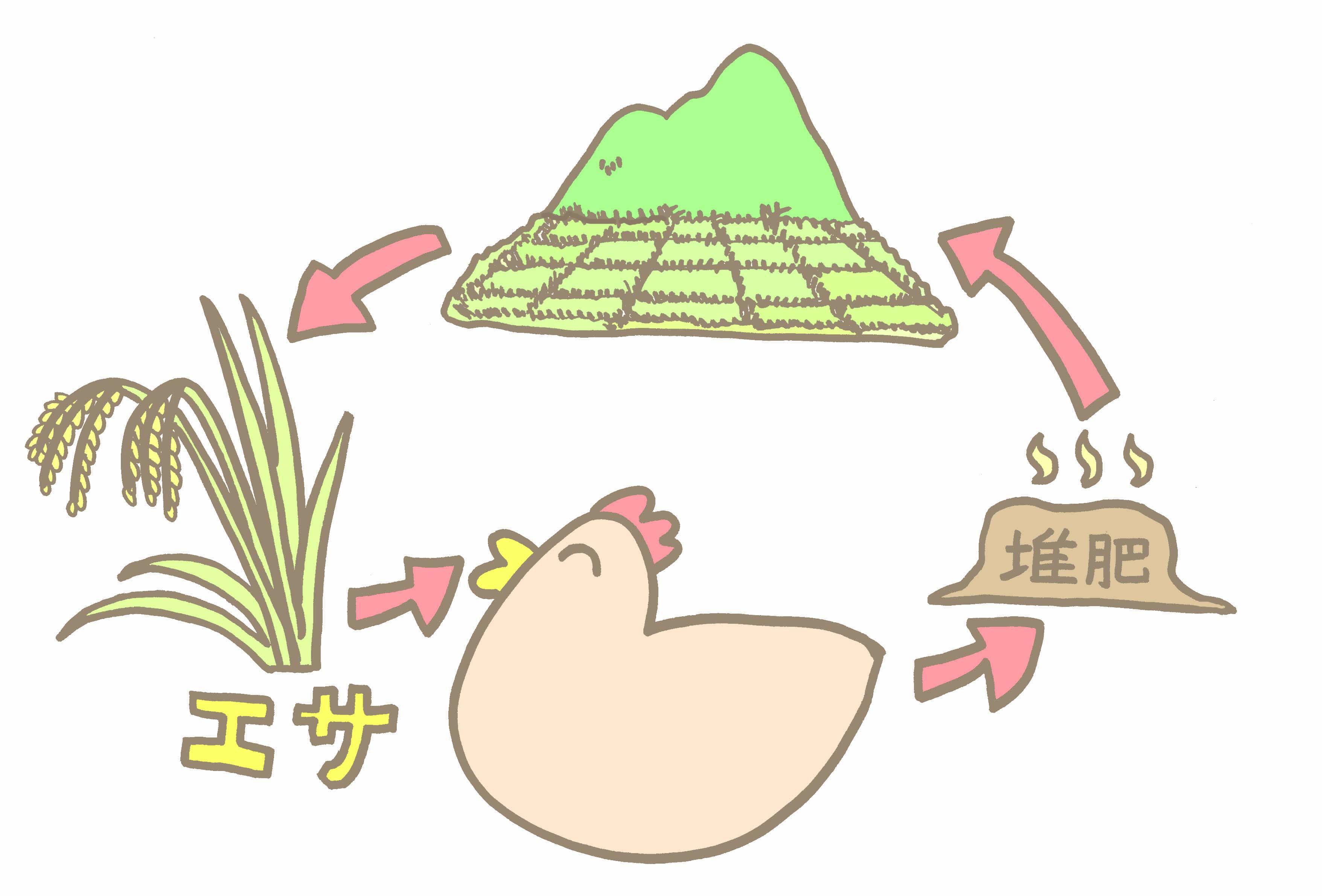 循環、鶏糞堆肥、秋川牧園、養鶏