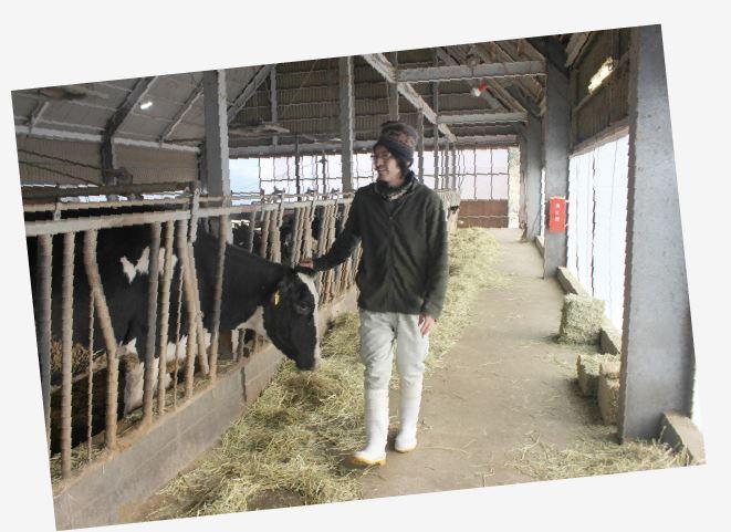牛達の頭をなでる手嶋牧場長