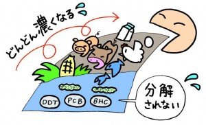 農薬と生態濃縮